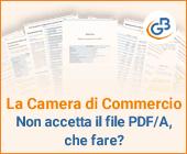 La Camera di Commercio non accetta il file PDF/A, che fare?