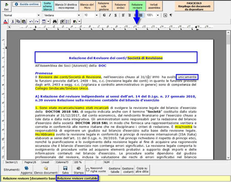Relazione del Revisore contabile dei conti - Esempio di relazione